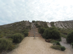 Hansen Bay Lookout Steps