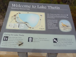 Lake Thetis Information