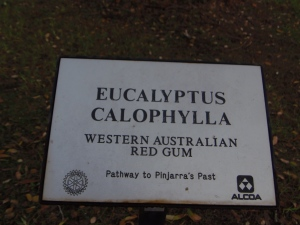 Red Gum Plaque